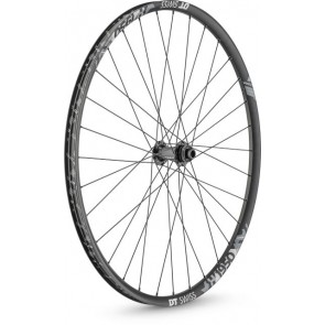 DT Swiss H 1950 Hybrid wheel, 25 mm rim, 15 x 100 mm axle, 29 inch / 700c front